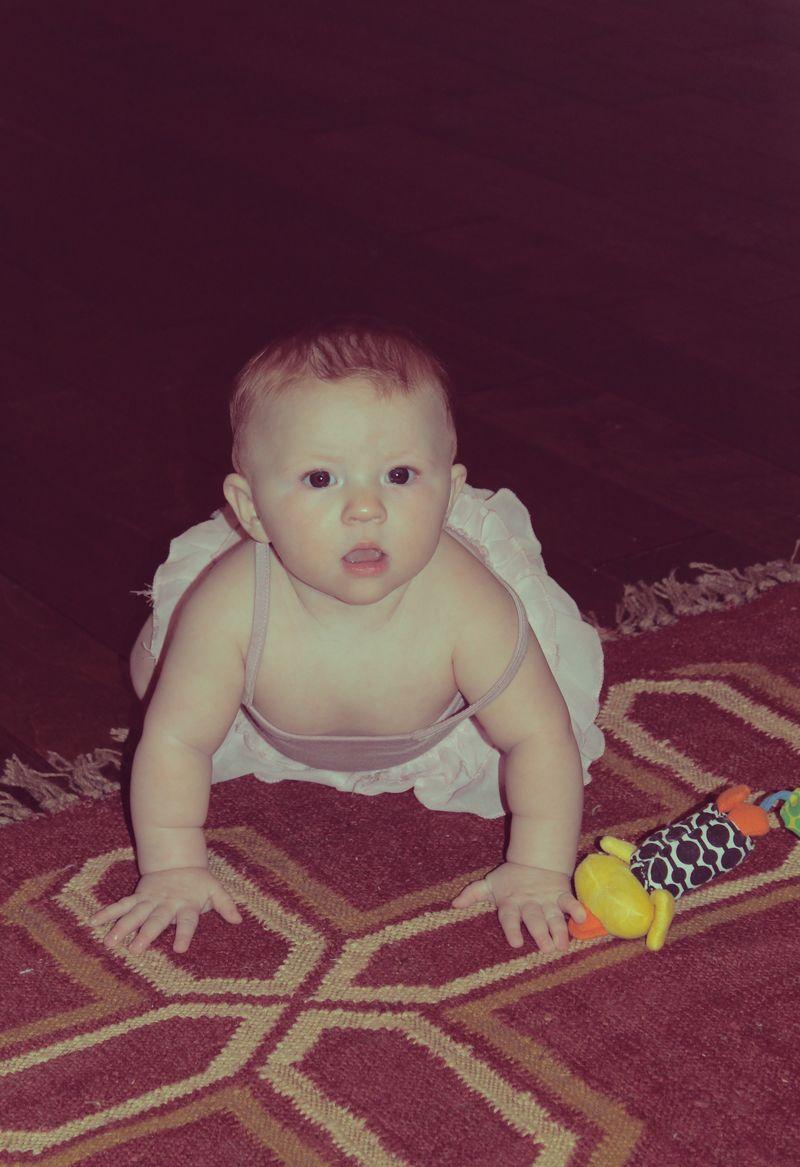 Tory floor crawling