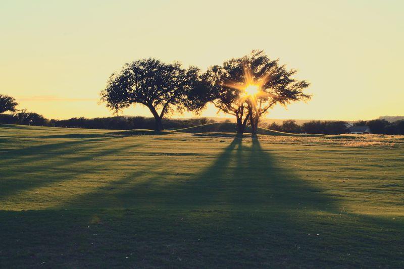 GolfSix