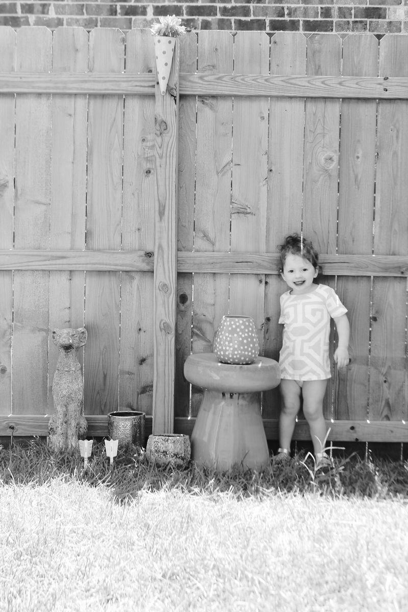 Backyard seven